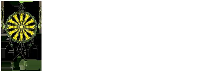 Vision Seeds Retina Logo